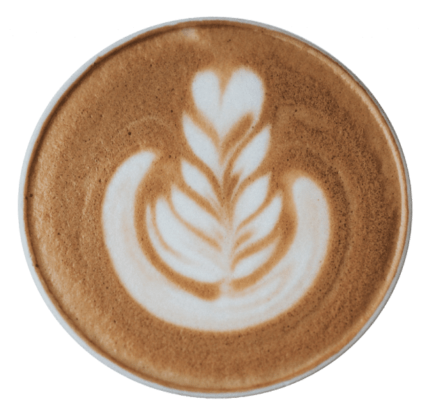 nathan dumlao 487461 unsplash 1 1 - Mobile Barista Coffee, Smoothies & Juice - The Rolling Bean